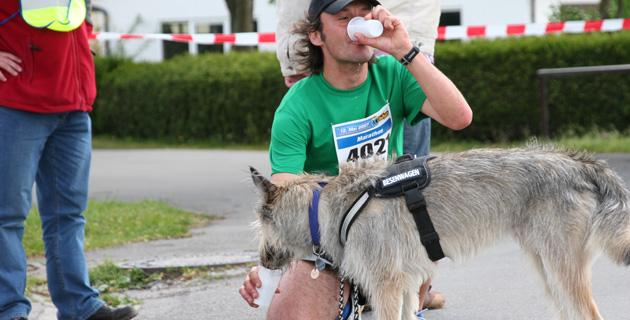 Mit Husky-Picard-Mix Kerkis beim Bad Waldsee Marathon