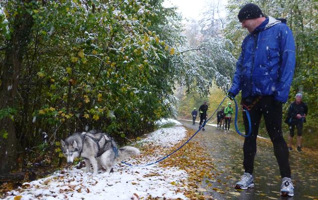 Mit Hund unter Läufern, Teil 4: Zweck und Optik