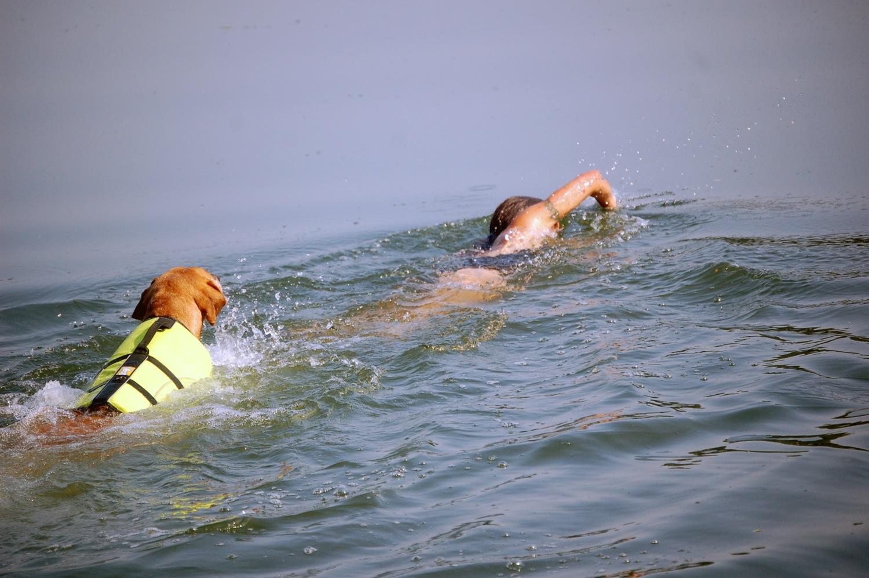 auch im Wasser