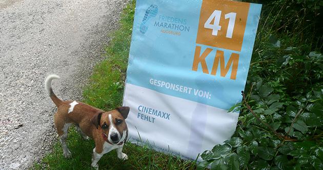 Lenny kurz vor Ziel beim Augsburg Marathon