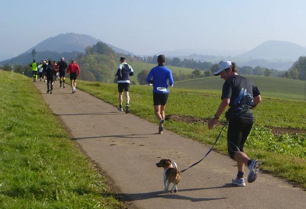 Mit Hund unter Läufern, Teil 6: Von Tops und Flops.