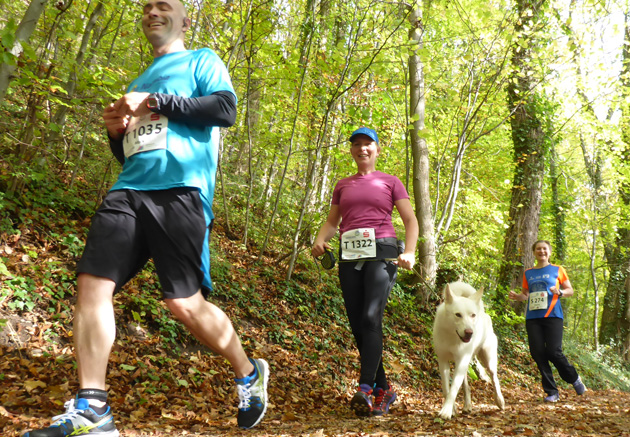 Mit Hund unter Läufern, Teil 10: Der Schw. Albmarathon 2014 aus vierbeiniger Perspektive.