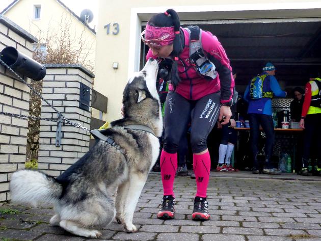 Mit Hund unter Läufern, Teil 11: Ultra-Debut für den Husky beim SWU (57 km / 820 hm / 7 h).
