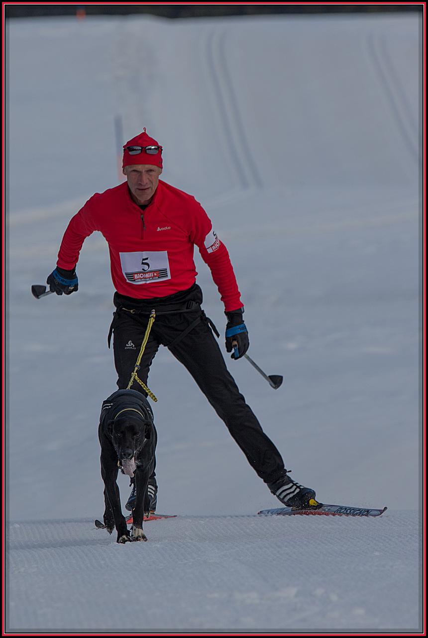 Werner und Finn beim Skijöring